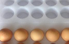 珍珠棉蛋托细节展示