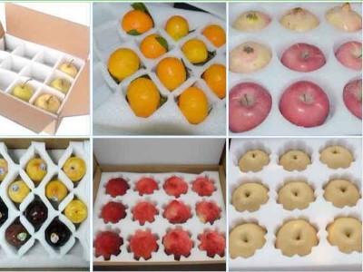 珍珠棉在水果包装行业中能起到什么作用